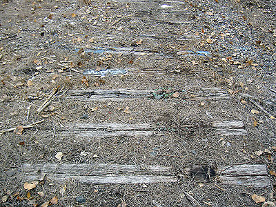 Railroad ties like an archeological skeleton