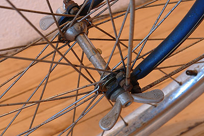 Steel front hub on Ladies Radeneick